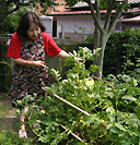 香月さんの庭