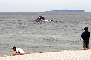 クジラが潮を吹く