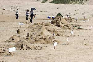完成した砂山アート