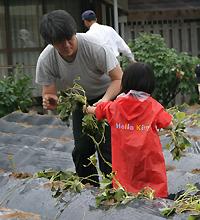 苗植えをする親子