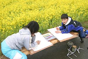 なの花のスケッチをする子どもたち