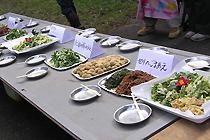 野草を使った料理の数々