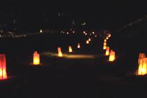 道の両脇に灯籠が並べられている