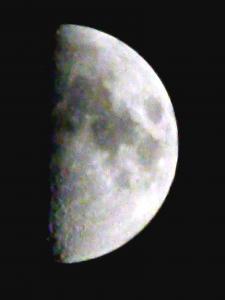 今夜は上弦の月です