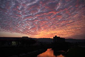 大根川からの朝焼け