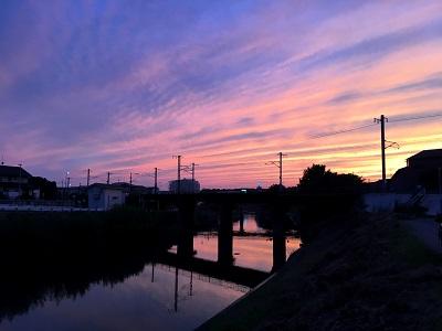 夕暮れの大根川