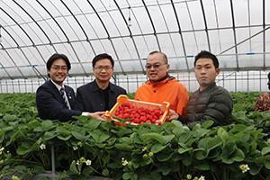 黄会長が3月に古賀市のあまおう農家さんを訪ねた様子
