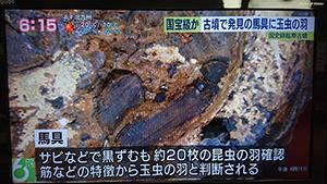 NHKの全国放送に