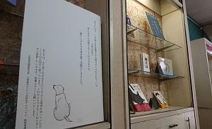 動物愛護の展示